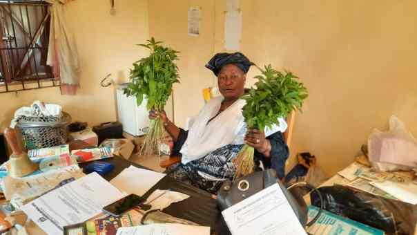 Schulleiterin mit Gemüse